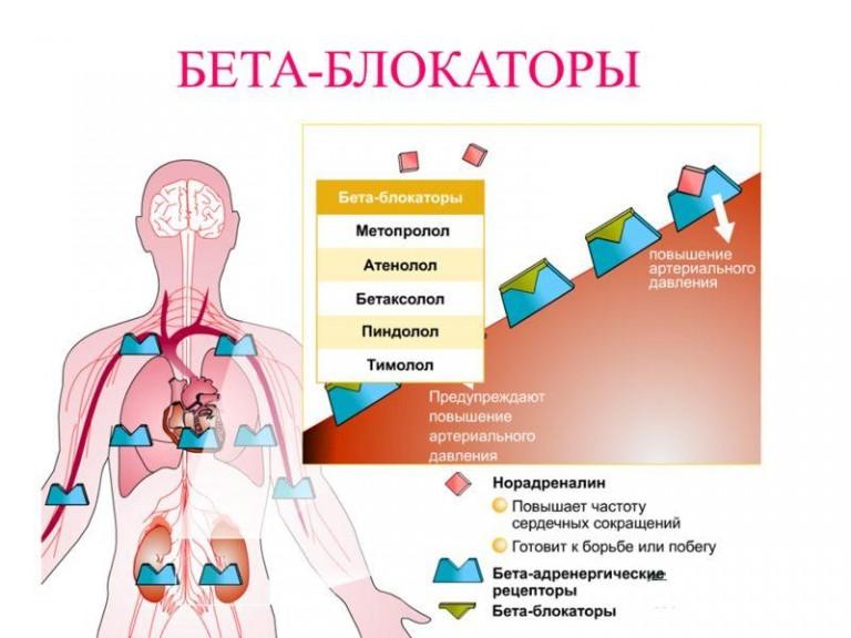 Изображение - Понижающие давление таблетки для мужчин Beta-blokatory