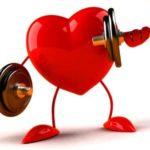 Организму необходимы кардионагрузки
