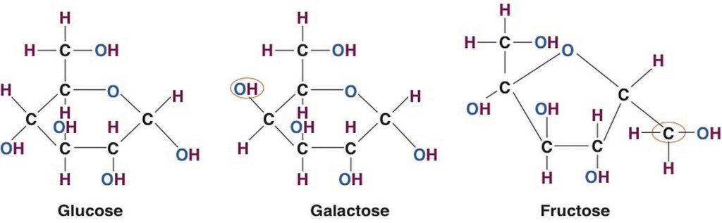Глюкоза - галактоза