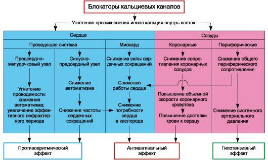 Изображение - Таблетки от высокого давления при диабете Blokatory-kaltsievyh-kanalov