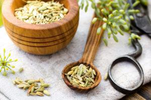 Чайная ложка сухих созревших семян