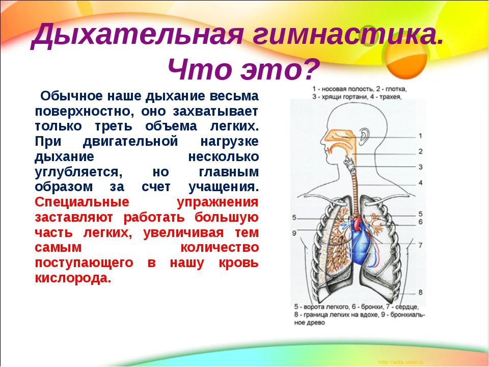 дыхательные гимнастики для очищения легких