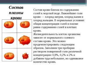 Количества калия в плазме крови