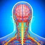 Нарушения в кровообращении мозга, недостаточное его питание кислородом