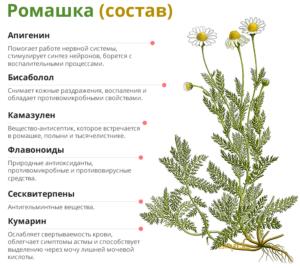 Изображение - Ромашка повышает давление Sostav-romashki-300x268