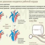 Показатели артериального давления