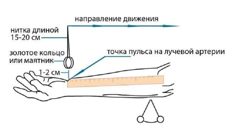 Изображение - Как определить артериальное давление ts